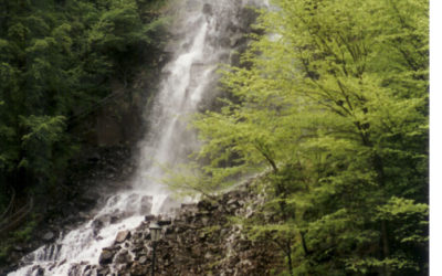 Der Trusetaler Wasserfall